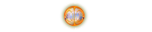 WELLNESS INSTITUTE energetic studies
